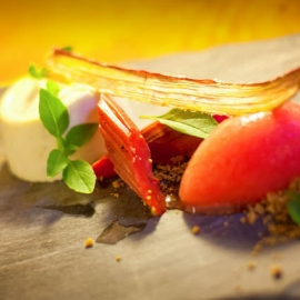 Gastronomy-Wine29